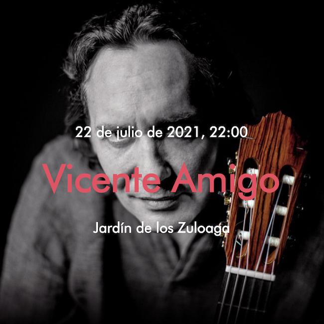 Vicente Amigo Segovia